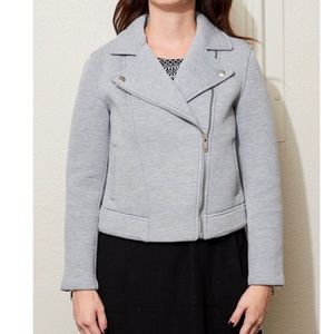 Heather grey knit moto jacket size xs petite